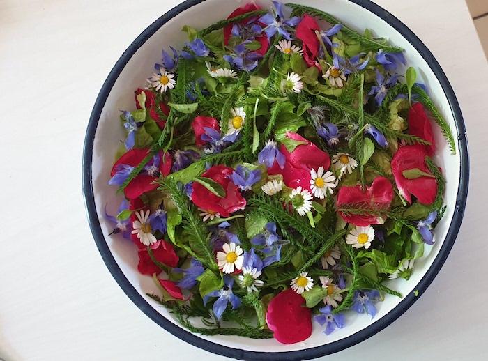 forage wild flowers